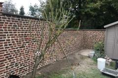 nettoyage mur jardin après intervention